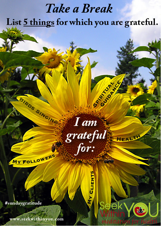 Gratitude to Raise your Vibration