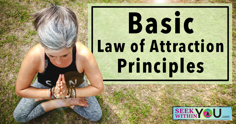 Basic Law of Attraction Principles